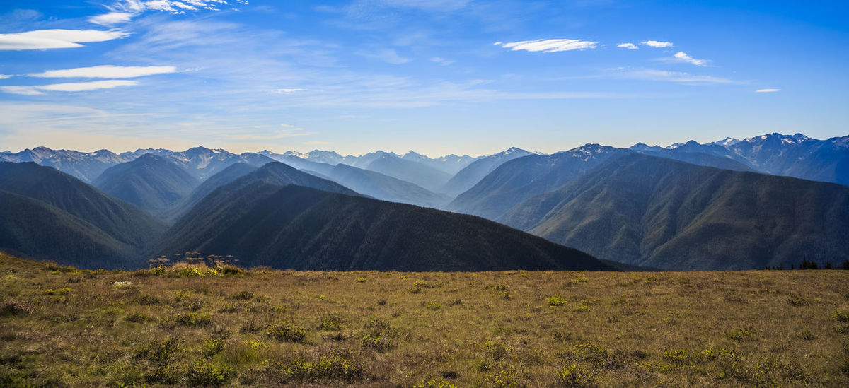 Hurricane Ridge panorama Backgrounds Beauty In Nature Cloud - Sky Day Glacier Hiking Landscape Mountain Mountain Range Nature No People Outdoors Panoramic Photography Scenics Sky Snow Travel Destinations