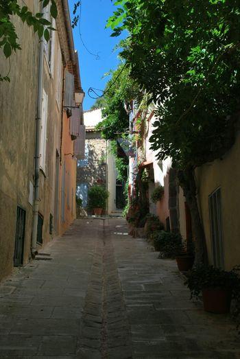 Streetphotography Provence France Cityscapes Sainttropez Narrow Street Summer