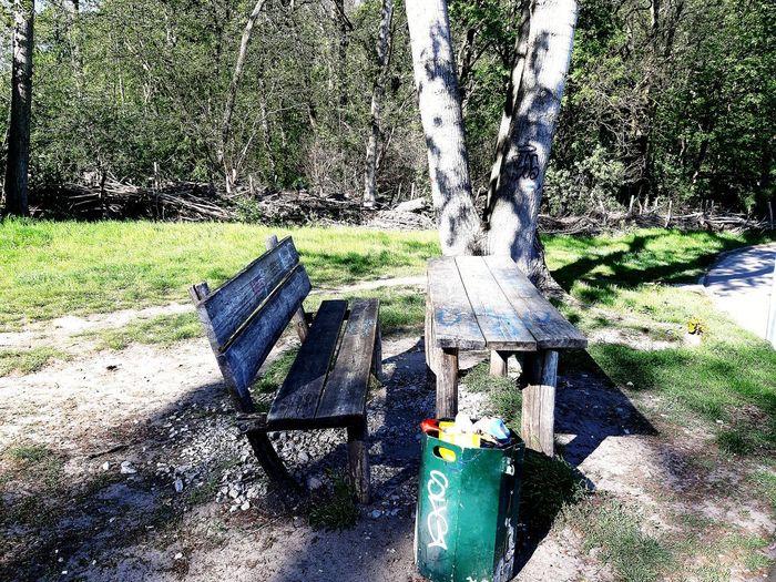 picnic scene: