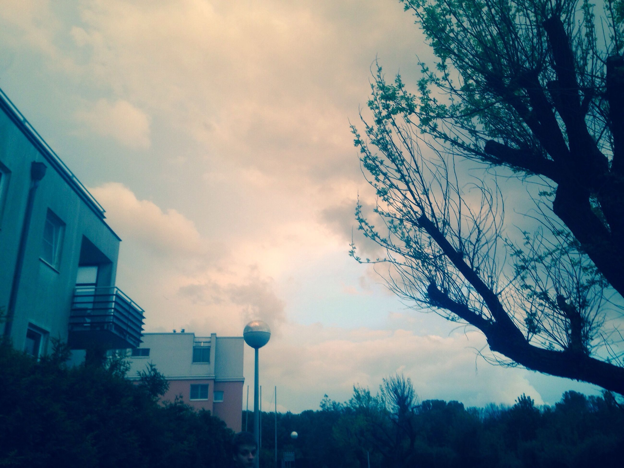 building exterior, architecture, built structure, sky, low angle view, tree, city, cloud - sky, building, silhouette, residential building, cloud, cloudy, residential structure, bare tree, branch, dusk, outdoors, city life, no people