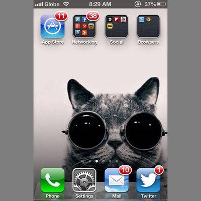 """@hi_im_pat_s @kylierawrrs @ananayasco Look at my wallpaper! Cool Cat! :3 Haha."" IPhone Iphonewallpaper Retro Vintage tumblr teamiphone kitty cat"