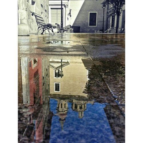 Despues de la lluvia siempre llegan los... charcos!! Buenos dias!!! ☺☺?