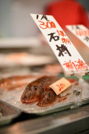 生きてると思った。 Close-up Luck Animal No People Indoors  Selective Focus Leisure Games Fish Focus On Foreground Food And Drink Table Seafood