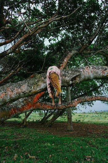 Rear view of woman by tree on field