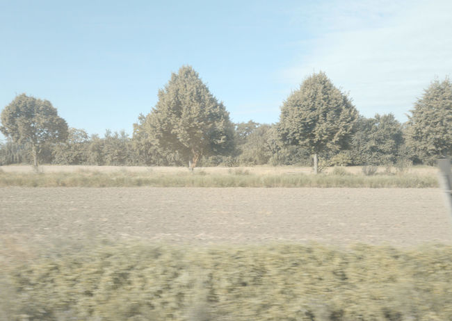 #16025 Clear Sky Day Environment Field Land Landscape Nature No People Outdoors Sky Tranquil Scene Tranquility View From Train View From Train Window