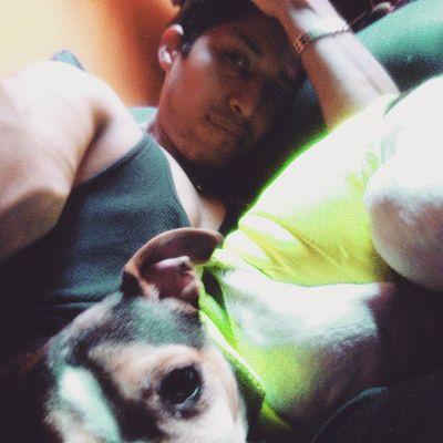 Ya despertó. Epsilon Ojo Dog Dog Love Dogphotography