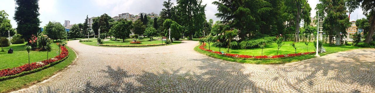 Check This Out Panaromic Park Istanbul Nature Green Tree