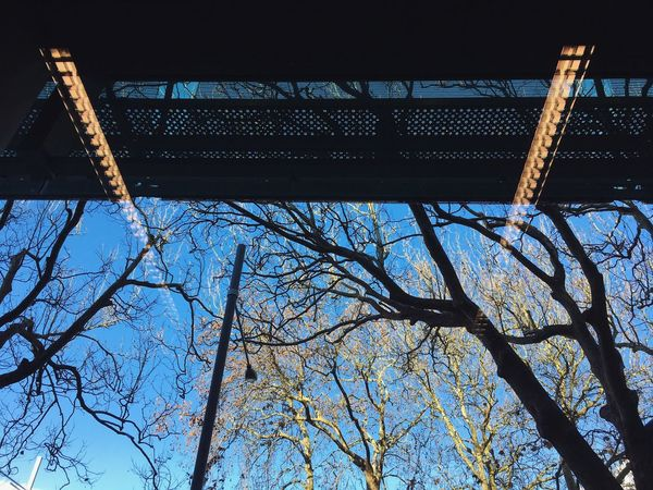 Inside/outside Architecture Studying Outdoors Sky Trees