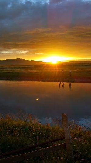 Sunset Grassland Traveling
