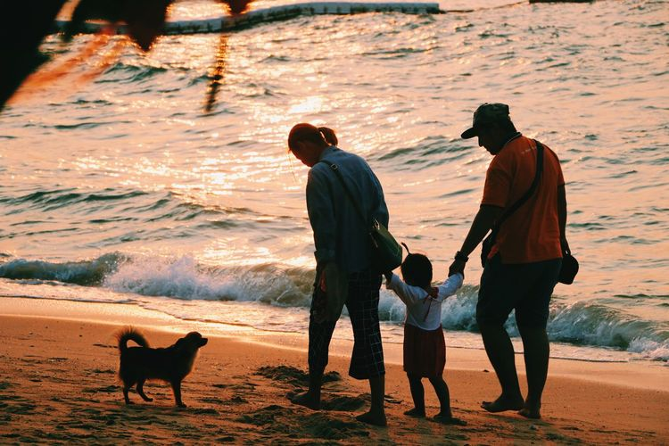Family. Light And Shadow Beach Sunset Dog Pets Friendship Adult Outdoors Stories From The City This Is Family