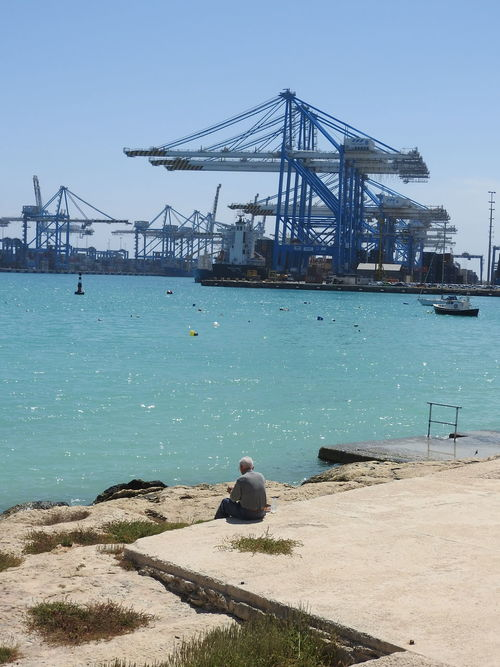 Blue Cargo Port Flock Of Cranes Lifestyles Seaport Shipping  Sky Sunlight Water