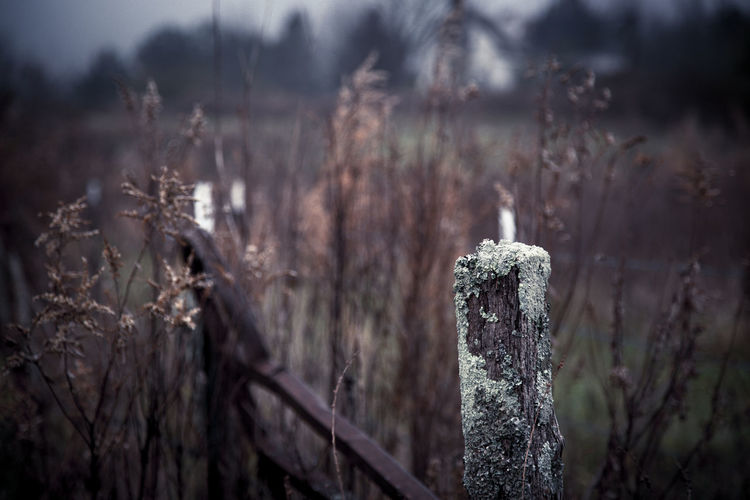 Old Abandoned Fence On Field At Dusk