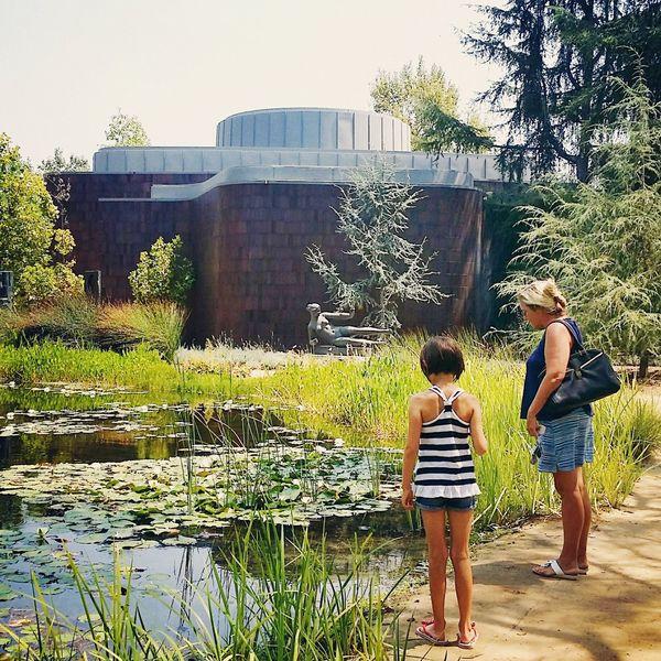 Nortonsimonmuseum Garden Pond First Eyeem Photo
