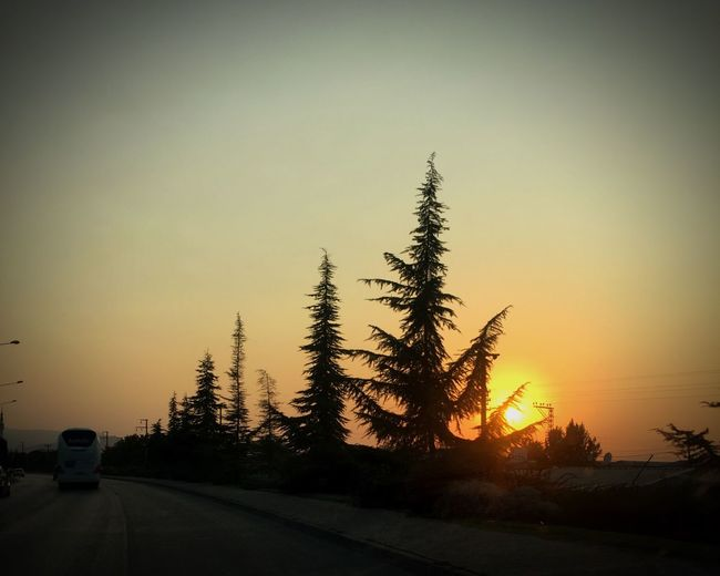 Sunset Nature Tree No People Car Beauty In Nature Clear Sky Outdoors Sky Day
