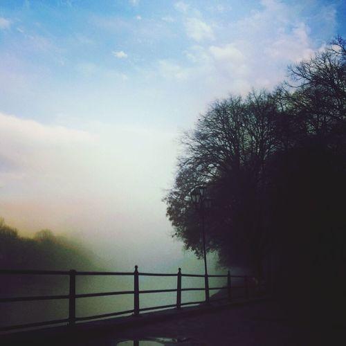 Украина♥ ужгород набережная независимости туман липовая алея