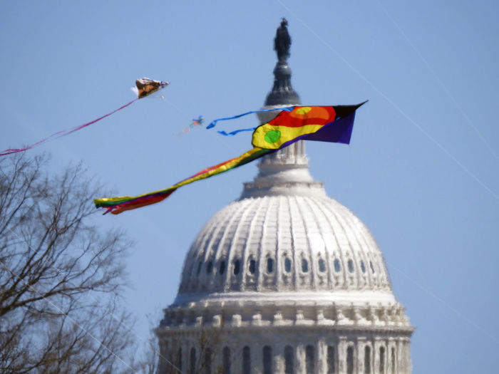 Several kites fly in front of the US Capitol rotunda during the annual Cherry Blossom Festival in Washington, DC, on March 31, 2018. Cherry Blossom Festival Kites Rotunda US Capitol Building Architecture Building Exterior Built Structure City Clear Sky Congress Day Dome Flag Government Low Angle View Multi Colored Nature No People Outdoors Patriotism Sky Springtime Tourism Travel Travel Destinations