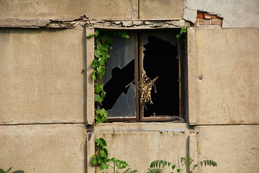 Broken Window Old Time & Abondoned Factory