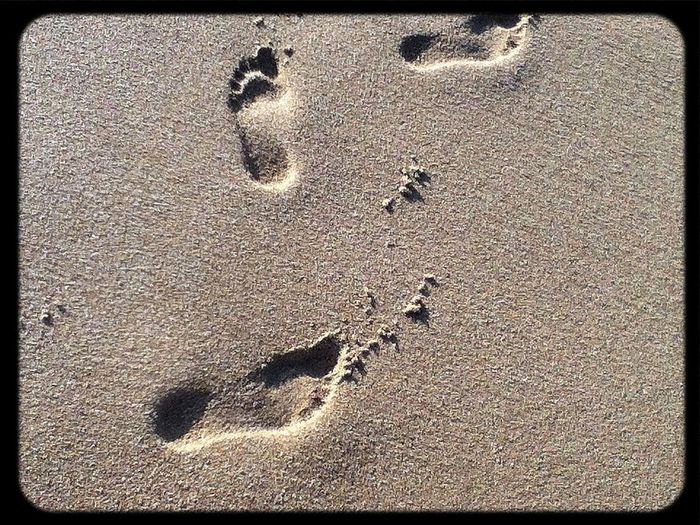 Foot Print Enjoying Nature On The Beach Taking Photos Life In Motion