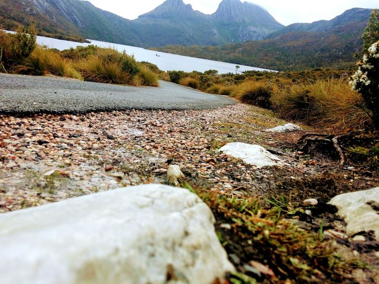 Road Tasmania Australian Landscape EyeEmNewHere GALAXY S4