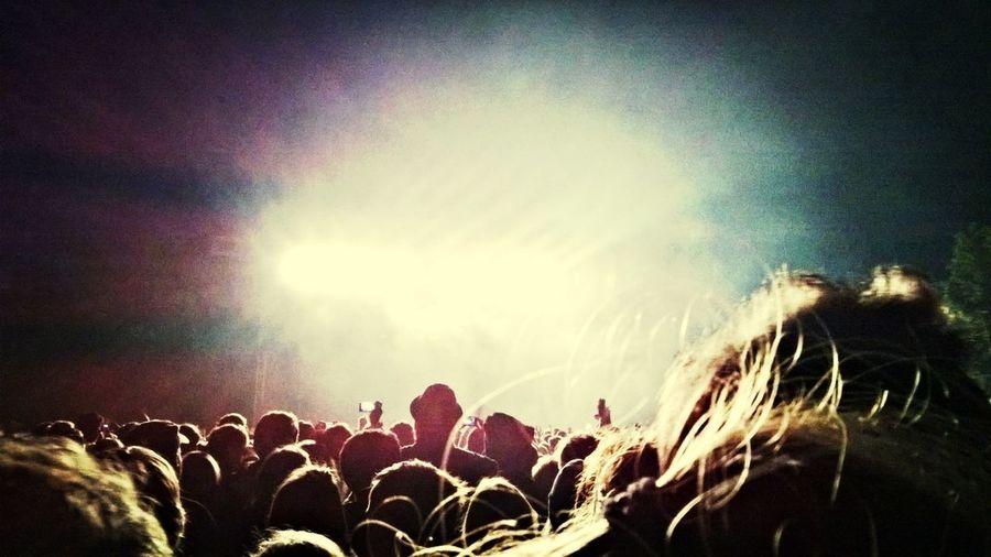 People enjoying at concert