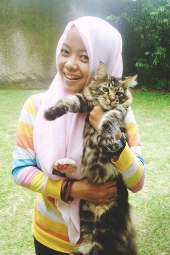 Beautiful Cat Cat Lovers Cfa Fun FUNNY ANIMALS Grass Happy Ica INDONESIA Irfan Leisure Activity Maincoon Maincoon Kitten Nature Outdoors