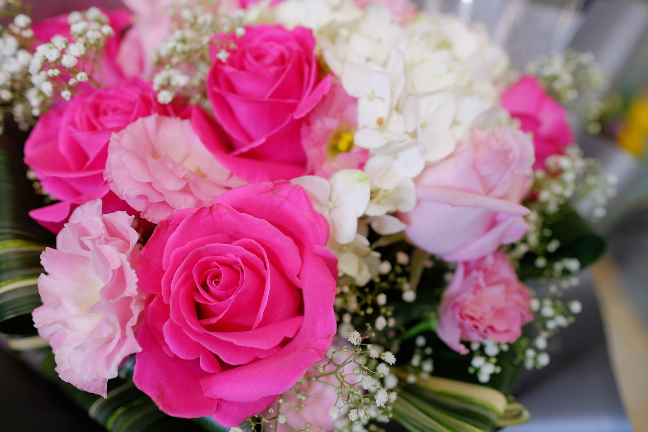 HIGH ANGLE VIEW OF PINK ROSE BOUQUET