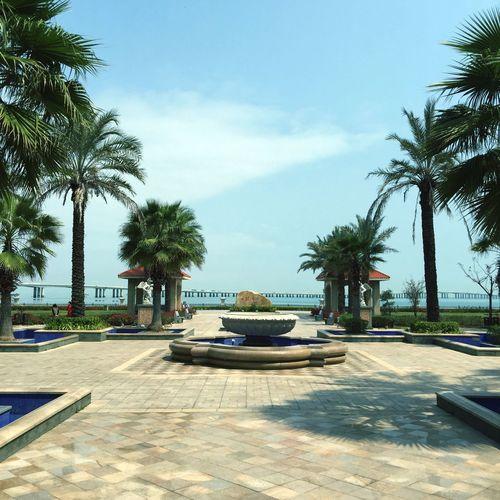 在京闽北海湾酒店听了课跟住了一宿,第一次住这么高大上的房间,这是酒店外面的风景远处那是集美大桥,这景太尼玛舒心了。