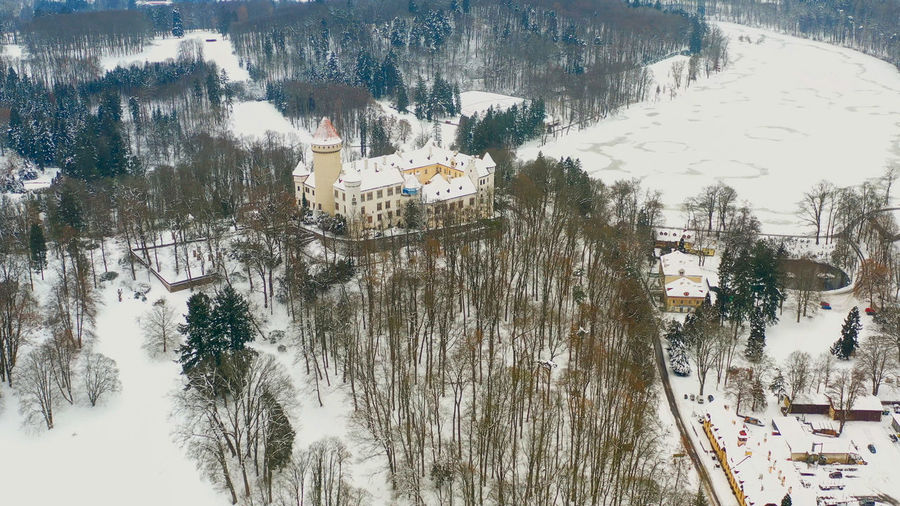 High angle view of trees and buildings during winter