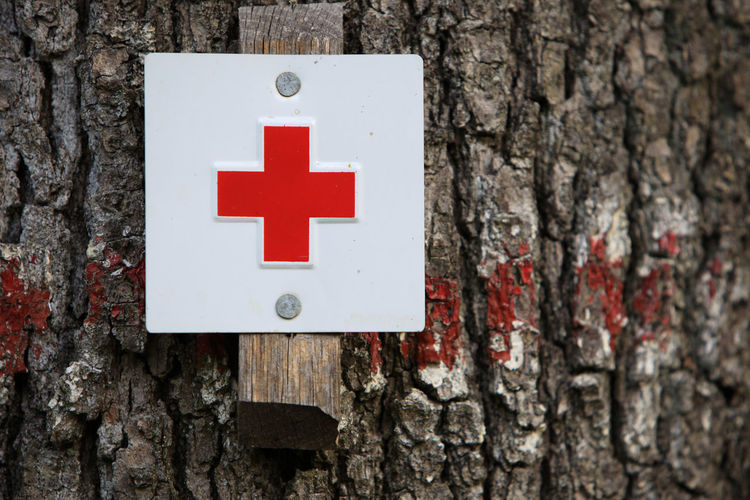 Close-up of red cross sign on tree trunk