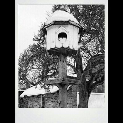 Instagram Instagood BWWinter February snow andrology Architecture Landscapelovers travelingram