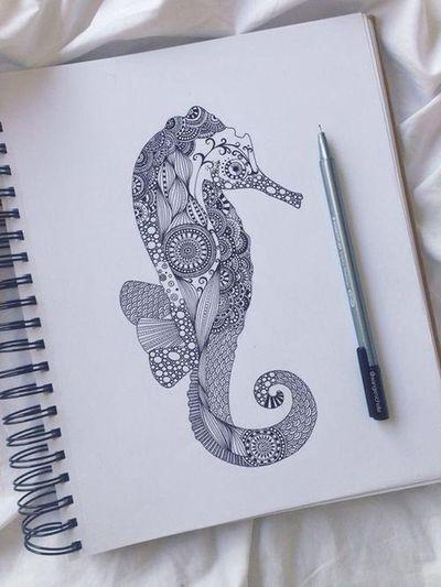Draw Drawing Drawings Draws