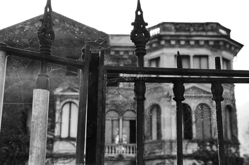 Atmosphere Black & White Mysterious Place Suspense Abandoned Buildings Architecture Black And White Friday Book Cover Building Exterior Eerie Scene Film Noir Style Focus On Foreground Frightening Monochrome Mysterious Mystery Old Buildings Old House Outdoors Spider Web Strange Architecture Strange Place Thriller