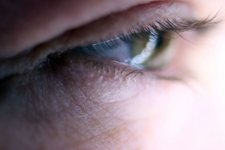 Close-up of person eye