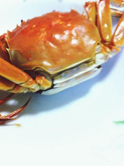 lake crab? Enjoying Life