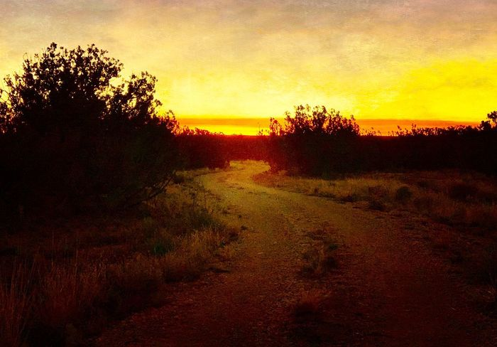 """""""Dawn Paints The Road 7:08 am"""" A country road, a New Mexico sunrise, a painted course, a morning surprise. New Mexico Skies Dramatic Sky Early Morning Dawn Of A New Day Dawn Sunrise New Mexico New Mexico Photography Sky Tranquility Tranquil Scene Beauty In Nature Silhouette Scenics - Nature Orange Color Idyllic Landscape"""