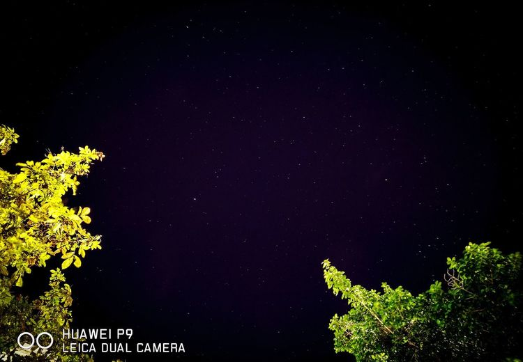 หมู่ดาวกลางกรุง Star - Space Night Astronomy Low Angle View Nature Tranquility No People Sky Outdoors Galaxy