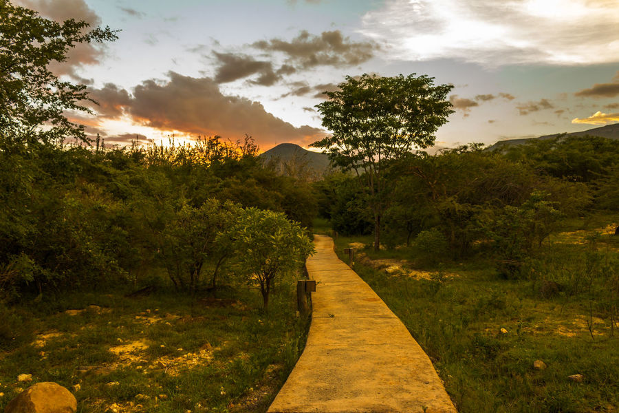 Jungle Sunset Angola Path Travel Vacations Africa Beauty In Nature Day Destination Grass Huila  Landscape Lubango Mountain Nature No People Outdoors Scenics Sky Summer Sunset Tourism Tranquil Scene Tranquility