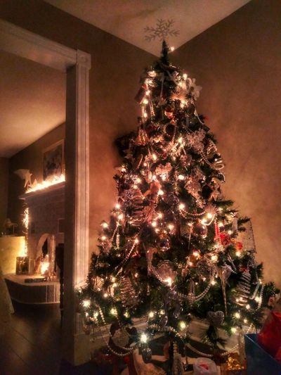 Wishing everyone a very Merry Christmas! 🎅 Tree Christmas Decoration Illuminated Christmas Lights Christmas Christmas Ornament Celebration Holiday - Event christmas tree Tradition