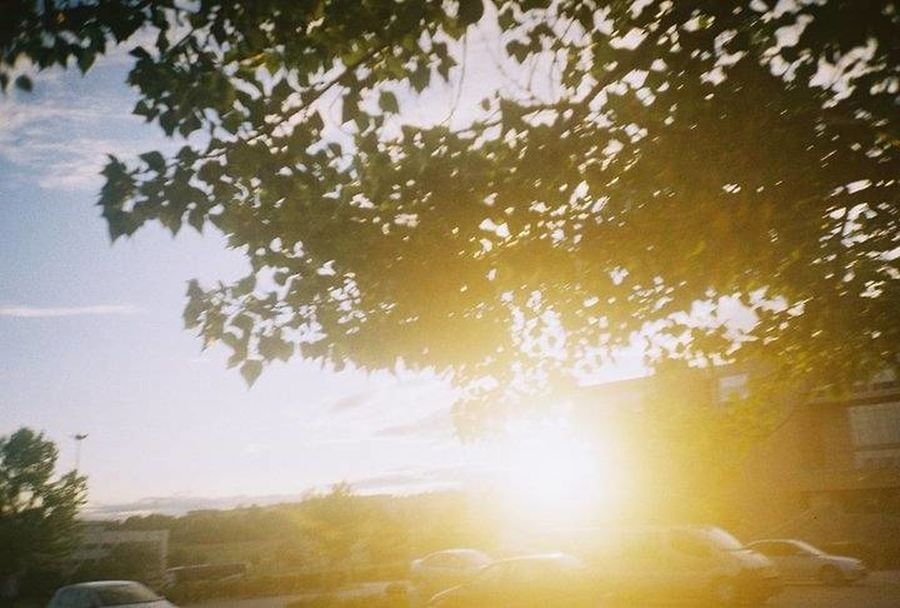 This is also taken by Lomo LC-A Lomography Light And Shadow Light Sun Light Through Trees Sunlight Nature Minimalism Simplicity Abstract Analogue Photography Analogue Sunshine Sunset Throwback Learn And Shoot: Balancing Elements Film Colors Urban Spring Fever On The Way