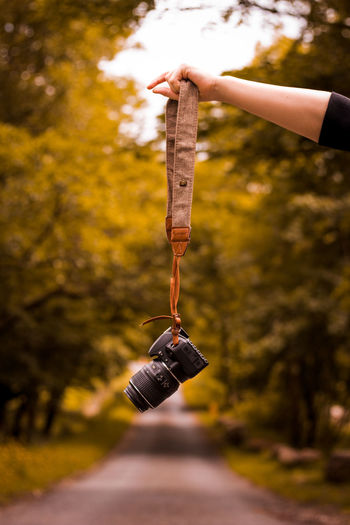Autumn Change Day Finger Focus On Foreground Hand Hanging Holding Human Body Part Human Hand Leisure Activity Lifestyles Nature One Person Outdoors Plant Real People Teenager Tree Unrecognizable Person Wood - Material
