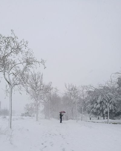 Man on snow covered trees against clear sky