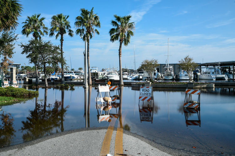 Wet Road Architecture Beauty In Nature Building Exterior Built Structure Day Flooded Road, Blocked Road, Marina, River, Sunny Day, After The Storm, Moored Nature Nautical Vessel Outdoors Palm Tree Real People Reflection Sky Transportation Tree Water