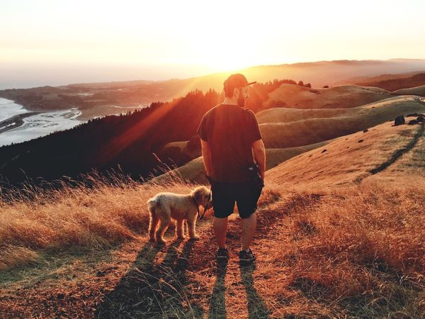 I organized a group of friends to go hike Mt Tam for sunset. Here's a photo of my friend and his dog, taken with the iPhone 6s. Sunset Rear View Full Length Tranquil Scene Domestic Animals Sunlight Mountain One Animal Tranquility Mountain Range Beauty In Nature Travel Scenics Sun Tourism Tourist Lens Flare Countryside Person Casual Clothing