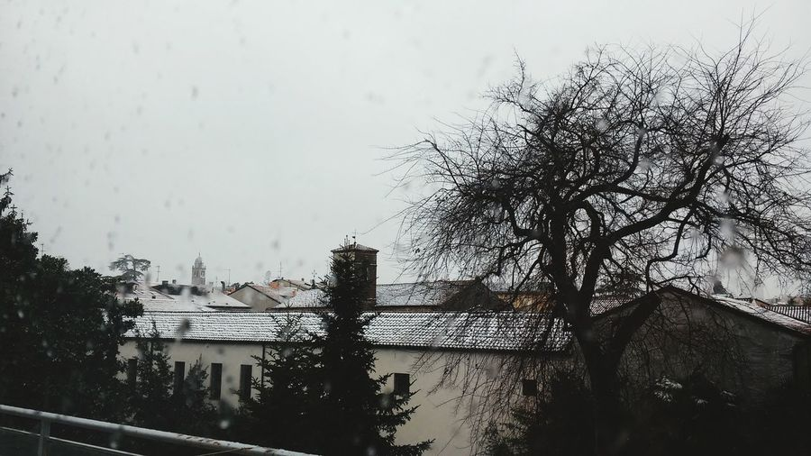 Snow ❄ Wintertime Padua Taking Photos Snowing Cold Winter ❄⛄ Studytime Landscapes Outofwindow
