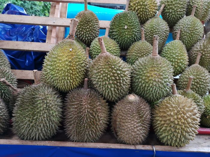 Durian Fruit Durian Season Durians Shop Durian Musang King Durian Durians Fruit Stall Fruit Market Spiked Thorn Close-up Plant Succulent Plant Prickly Pear Cactus Aloe Vera Plant Aloe Saguaro Cactus Needle - Plant Part Sharp Pastry Blade Razor Wire Barbed Wire Spiky Supermarket Produce Aisle Groceries Shopping Cart Tropical Fruit Shopping Basket The Mobile Photographer - 2019 EyeEm Awards The Foodie - 2019 EyeEm Awards