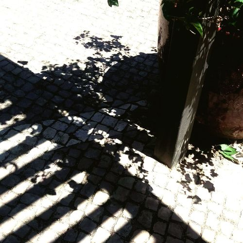 Shadows in the street Shadow Sunlight Day Casualphotography Casual Photography Casual Photo Casual Photograph Streetphotography Street Photography Patterns In Nature Pattern Photography Shadow Photography