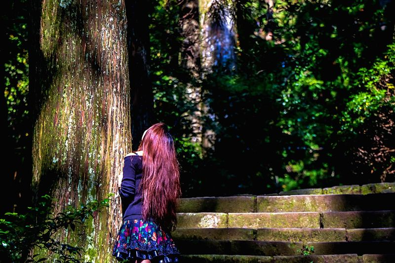 Hugging A Tree In The Forest Tall Trees Tree_collection  Forest Park Trees Forest Tree Trunk TreePorn Nature EyeEm Best Edits EyeEm Nature Lover Big Tree! Beautiful Girl In The Forest Girl And Tree