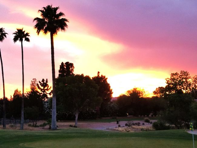 Addicted To Photography Sharing A Moment Sunset_collection Golf Is My Life ⛳️ ViweoutofmywindowWomen Of EyeEm Landscape_photography Check This Out MyPlace❤️❤️❤️❤️❤️❤️❤️❤️❤️❤️❤️❤️❤️❤️❤️❤️❤️❤️❤️❤️❤️ Noedit Nofilter JustBeautiful Arizonasunsetsarethebest