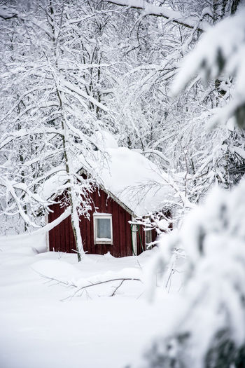 Architecture Beauty In Nature Building Exterior Built Structure Cold Temperature Day Frozen House Landscape Nature No People Outdoors Range Snow Snowdrift Snowing Tree Weather White Color Winter