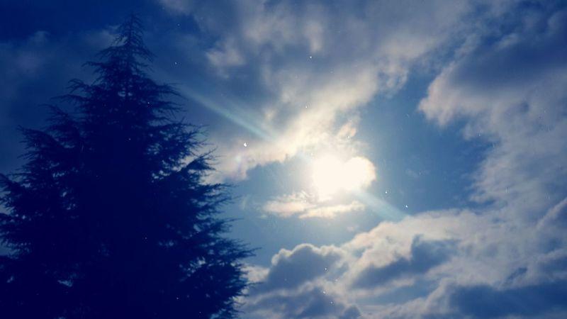 Güneşte kalp